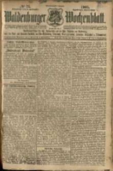 Waldenburger Wochenblatt, Jg. 51, 1905, nr 73